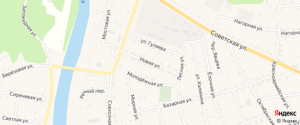 Новая улица на карте села Усть-коксы Алтая с номерами домов