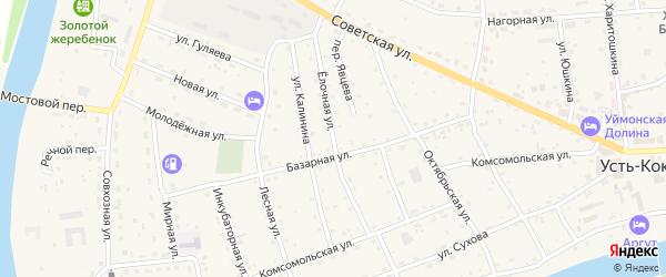 Елочная улица на карте села Усть-коксы Алтая с номерами домов