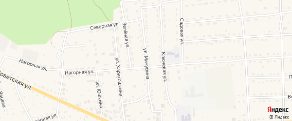 Улица Мичурина на карте села Усть-коксы Алтая с номерами домов