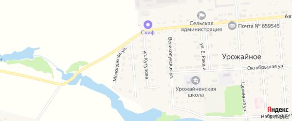 Улица Кутузова на карте Урожайного села с номерами домов