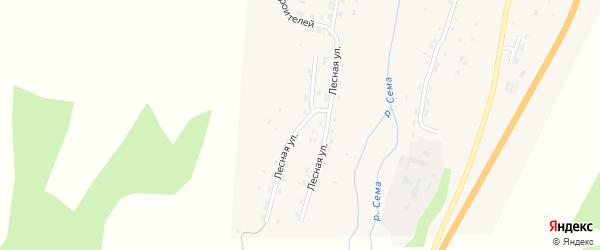 Лесная улица на карте села Шебалино Алтая с номерами домов