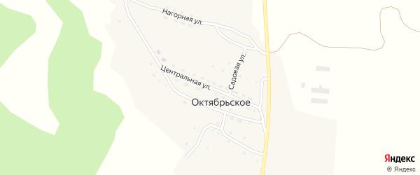 Центральная улица на карте поселка Октябрьского Алтая с номерами домов