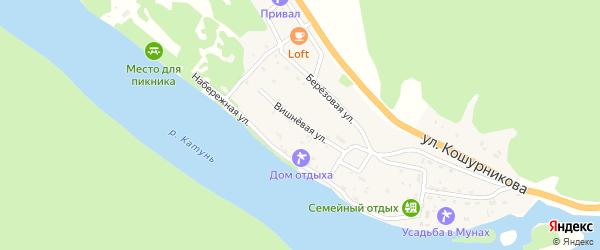 Вишневая улица на карте села Усть-Муны Алтая с номерами домов