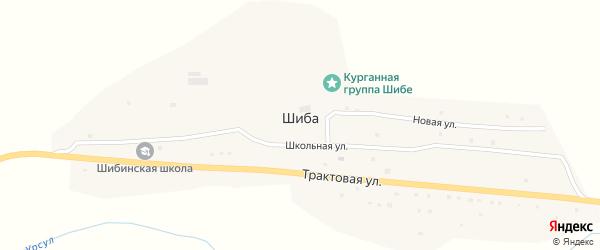 Трактовая улица на карте села Шибы с номерами домов