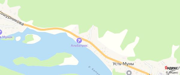 Родниковый переулок на карте села Усть-Муны Алтая с номерами домов