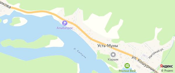 Улица Кошурникова на карте села Усть-Муны Алтая с номерами домов