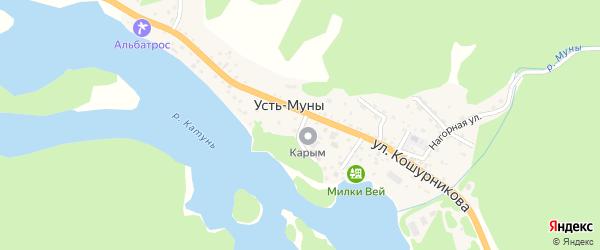 Переулок Сосновый Бор на карте села Усть-Муны Алтая с номерами домов