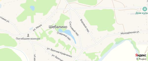 Сосновый переулок на карте села Шебалино с номерами домов