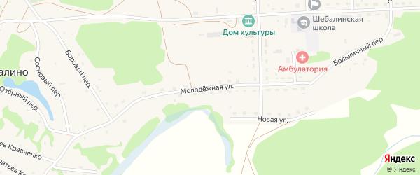 Молодежная улица на карте села Шебалино с номерами домов