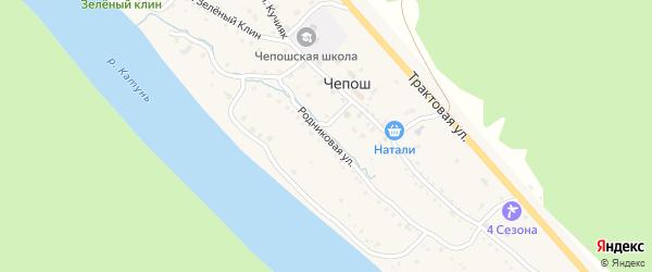 Родниковая улица на карте села Чепош Алтая с номерами домов
