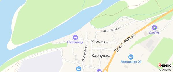Береговой 2-й переулок на карте поселка Карлушки Алтая с номерами домов
