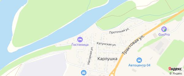 Береговой 1-й переулок на карте поселка Карлушки Алтая с номерами домов