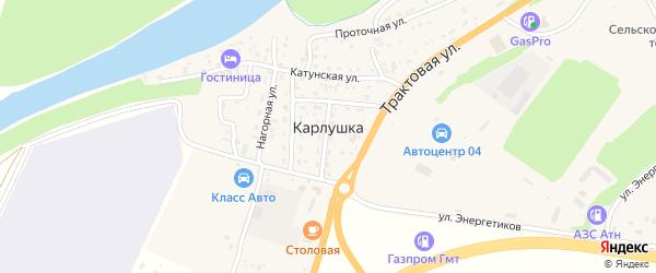 Каменный переулок на карте поселка Карлушки Алтая с номерами домов