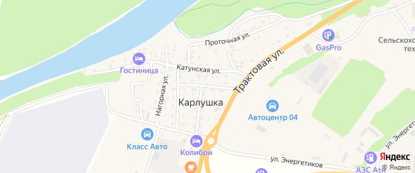 Солнечная улица на карте поселка Карлушки Алтая с номерами домов