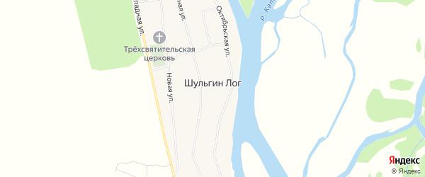 Карта села Шульгина Лога в Алтайском крае с улицами и номерами домов