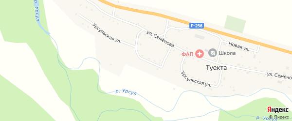 Урсульская улица на карте села Туекты Алтая с номерами домов