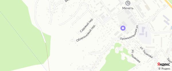 Облепиховый переулок на карте Горно-Алтайска с номерами домов