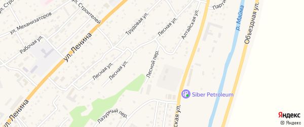 Лесной переулок на карте села Майма Алтая с номерами домов