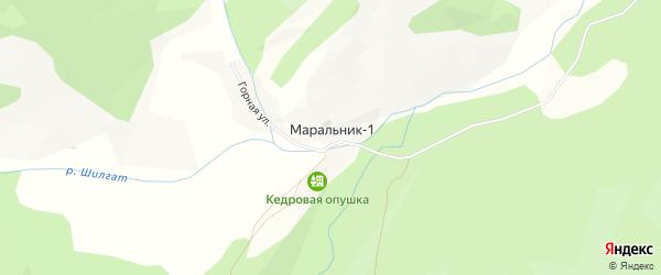Карта села Маральника-1 в Алтае с улицами и номерами домов