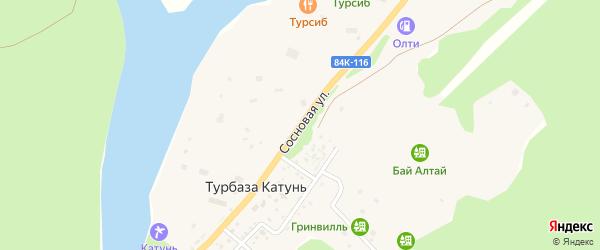 Сосновая улица на карте села Турбазы Катунь Алтая с номерами домов
