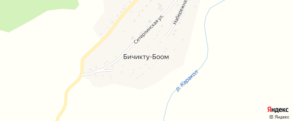 Молодежная улица на карте села Бичикту-Боома Алтая с номерами домов