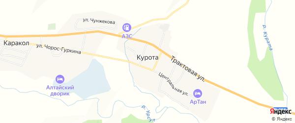 Карта села Куроты в Алтае с улицами и номерами домов