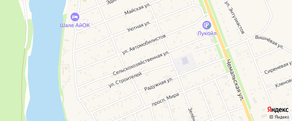 Сельскохозяйственная улица на карте села Чемал Алтая с номерами домов