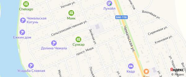 Зеленая улица на карте села Чемал Алтая с номерами домов