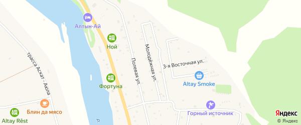 Молодежная улица на карте села Элекмонар Алтая с номерами домов