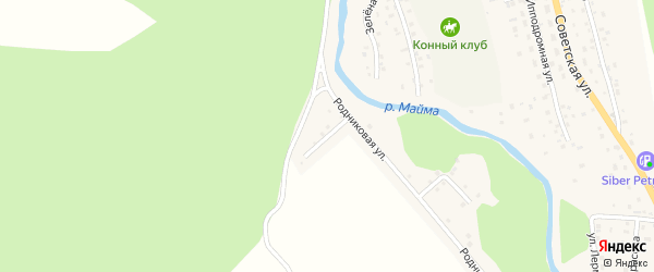 Родниковый переулок на карте села Кызыла-Озька Алтая с номерами домов