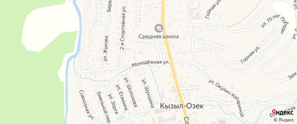 Молодежная улица на карте села Кызыла-Озька Алтая с номерами домов