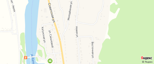 Новая улица на карте села Элекмонар Алтая с номерами домов