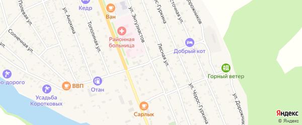 Улица Энтузиастов на карте села Чемал с номерами домов