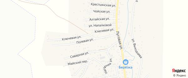 Полевая улица на карте поселка Алферово Алтая с номерами домов
