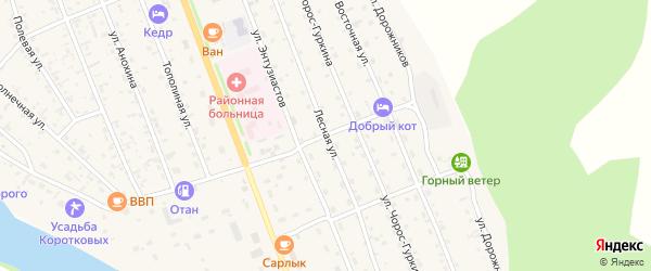 Лесная улица на карте села Чемал Алтая с номерами домов