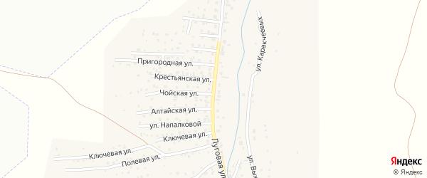 Луговая улица на карте поселка Алферово Алтая с номерами домов