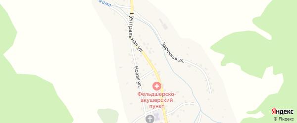 Центральная улица на карте села Бирюли Алтая с номерами домов