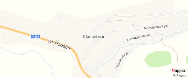 Подгорная улица на карте села Шашикмана Алтая с номерами домов