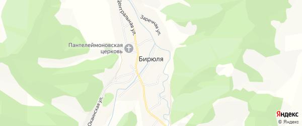 Карта села Бирюли в Алтае с улицами и номерами домов
