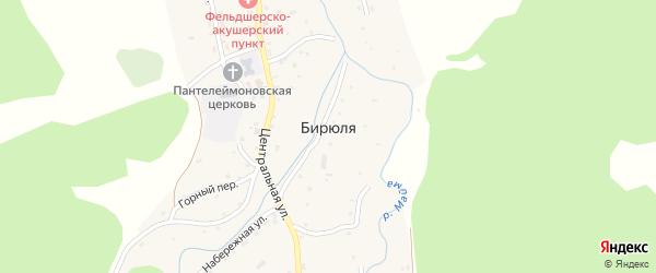 Луговая улица на карте села Бирюли Алтая с номерами домов