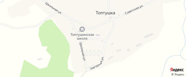 Новая улица на карте села Топтушки Алтайского края с номерами домов