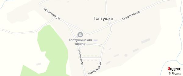 Школьная улица на карте села Топтушки с номерами домов