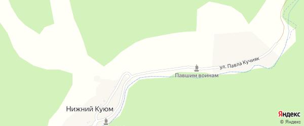 Улица П.Кучияка на карте села Нижнего Куюма Алтая с номерами домов