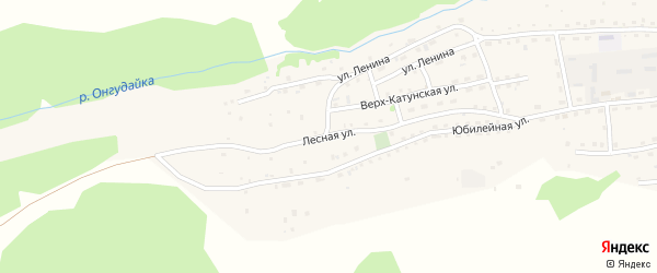 Лесная улица на карте села Онгудая Алтая с номерами домов