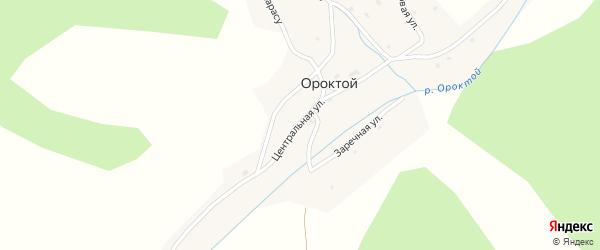 Центральная улица на карте села Ороктой Алтая с номерами домов