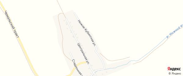 Нижне-Кубинская улица на карте села Куюс Алтая с номерами домов