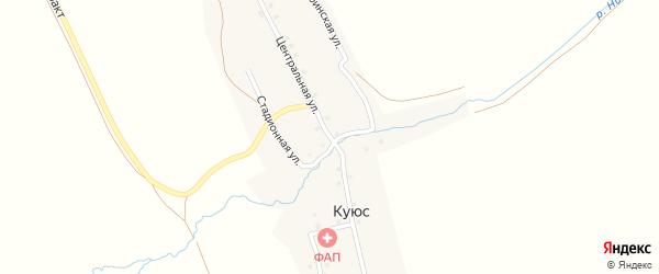 Центральная улица на карте села Куюс Алтая с номерами домов