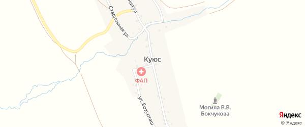 Заречная улица на карте села Куюс Алтая с номерами домов