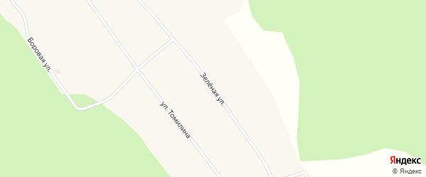 Зеленая улица на карте села Семеновки Томской области с номерами домов