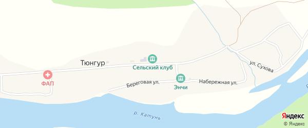 Улица Сухова на карте села Тюнгура Алтая с номерами домов
